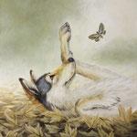 Wolf im Laub 2014