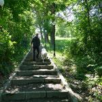 Spaziergang hinunter in den Ort Rupea und die dortige Kirche