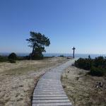 Die Vecekrugas-Düne - Einsamkeit und Stille pur