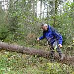 Das Sturmtief vom Wochenende hat Spuren hinterlassen. Wir müssen über umgestürzte Bäume klettern