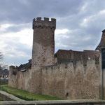 Teile der alten Stadtbefestigung von Obernai sind noch zu sehen