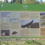 Auch hier ein Naturschutzgebiet am wunderschönen Ostseestrand