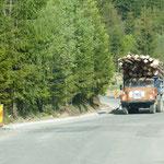 Holztransporter unterwegs auf der Passstrasse