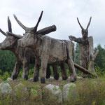 Ein Natur-Reservat, entstanden als Re-Naturierungsmaßnahme des Tagebergbaus in der Region