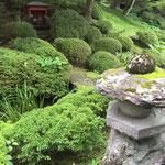 Viel Grün und moosbewachsene Steine verbreiten eine gewisse Mystik