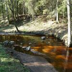 Der Bach führt torfiges Wasser aus dem nahe gelegenen Moorgebiet