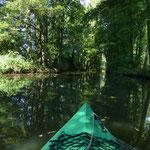 """Das Gleiten auf dem Wasser in der grünen """"Hölle"""" hat etwas unglaublich Entspannendes"""