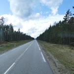 Eine schnurgerade Straße durch den Wald. Früher eine Landebahn für Flugzeuge im sowjetischen Sperrgebiet