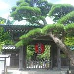 Hier erwartet uns die wunderschöne Tempelanlage Hase-dera