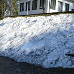Und Schneereste liegen auch noch en masse herum....