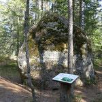 Ein ganz dicker Brocken steht im Wald