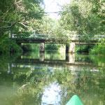 Der Amazonas Brandenburgs