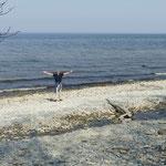 Der finnische Meerbusen ist erreicht