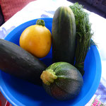 Das wollen wir doch gleich mal ausprobieren und verarbeiten unsere heutigen Einkäufe auf dem Gemüsehof