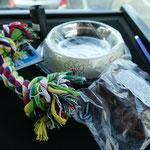 Und für die Vierbeiner gibt es ein nettes Präsent von DFDS - zum Trost für 19 Stunden Quarantäne im Auto