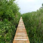 Über solche Stege und Wege geht es in den Naturpark