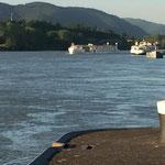 Die Saison beginnt - die ersten Donau-Kreuzfahrtschiffe sind da