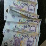 Und so schaut unsere Ausbeute rumänisches Geld aus