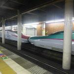 Auf geht's zur ersten Fahrt mit dem Shinkansen
