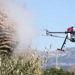 Drone pour lutter contre les frelons