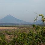Leon ist umgeben von ganz vielen Vulkanen - einige sind noch aktiv....