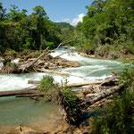 """Rio Paxilhá - der Zufluss des """"Aqua Azul"""" Wasserfalls"""
