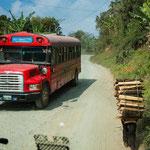 ....links ein Überlandbus und rechts ein Holzptransport per Muskelkraft.....