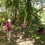 """Hier beginnt die Farm von Eladio Pop - """"ein etwas kultivierter Urwald""""...."""