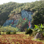 Dieses monumentale Felsengemälde hat Fidel Castro höchst persönlich in Auftrag gegeben