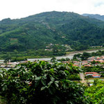 Blick auf Orosi und das Orosi Tal......