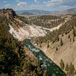 """der Yellowstone River frisst sich durch die """"Specimen Ridge"""""""