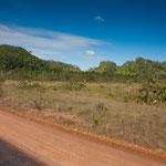 .....für Belize ein sehr trockenes Gebiet.....
