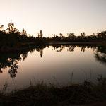 ein kleiner aber wunderschöner See mit vielen Fischen....