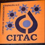 Das Emblem der Organisation