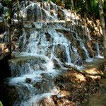 Dieser Wasserfall fließt über versteinert Blätter und Pflanzen