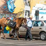 "...bei dem wilden Autoverkehr geht ""señor gaucho"" lieber zu Fuss."