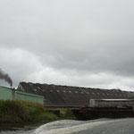 Die Zuckerfabrik an einem Seitenarm des Flusses