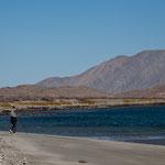 Bei Ebbe kann man viele kilometerweit am Strand laufen