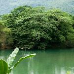 Einer von hunderten Flüssen an der Ostseite Mexikos.