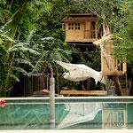 Ein Baumhaus mit Pool wartet auf Gäste