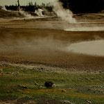 Norris Geyser Basin - die Teufelsküche - unheimlich aber ....