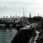 ...Essaouira hat einen großen Fischerhafen...