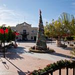 ..... einem speziellen mexikanischen Weihnachtsbaum.....