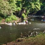 Fast alle Frauen des Dorfes sind zum Waschen versammelt am Fluss.....