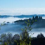 Ein Wintermorgen in der Toskana