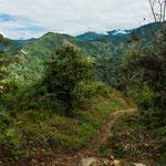 ....dieser Pfad führt auf den höchsten Berg von Costa Rica......
