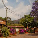 Villa Patzcuaro - eine wahre Pracht