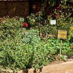 .....mit seinem Heilkräutergarten - der heute noch genutzt wird.