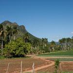 Schöne Landschaft und Felder bei Trinidad