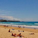 """der weltberühmte """"Manly Beach"""""""